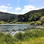 Piknik izleti za radovedne: Ljubljansko barje